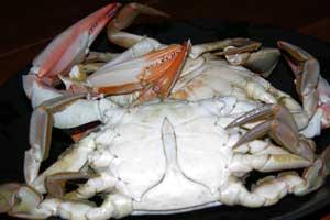Male-crab