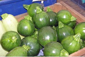 Globe-zucchini