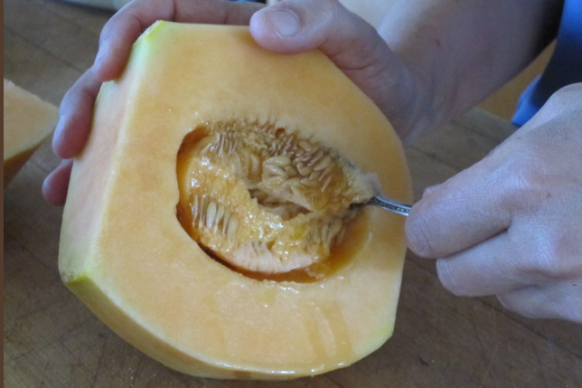 Cantaloupee_scoop-out-seeds